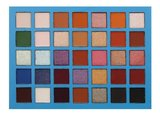 Beauty Creations 35 Color Pro Eyeshadow Palette Elsa - BCE12_